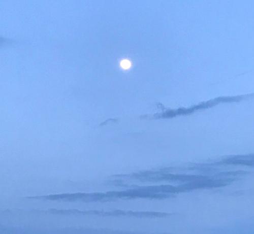 Moone1
