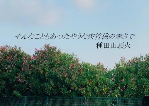 Photo_20190802233301