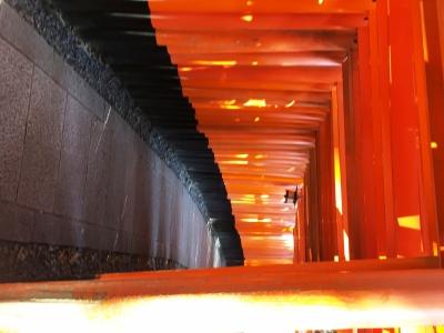 Kyoto1
